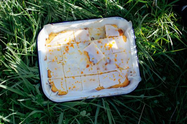 Orange and Vanilla Picnic Cake